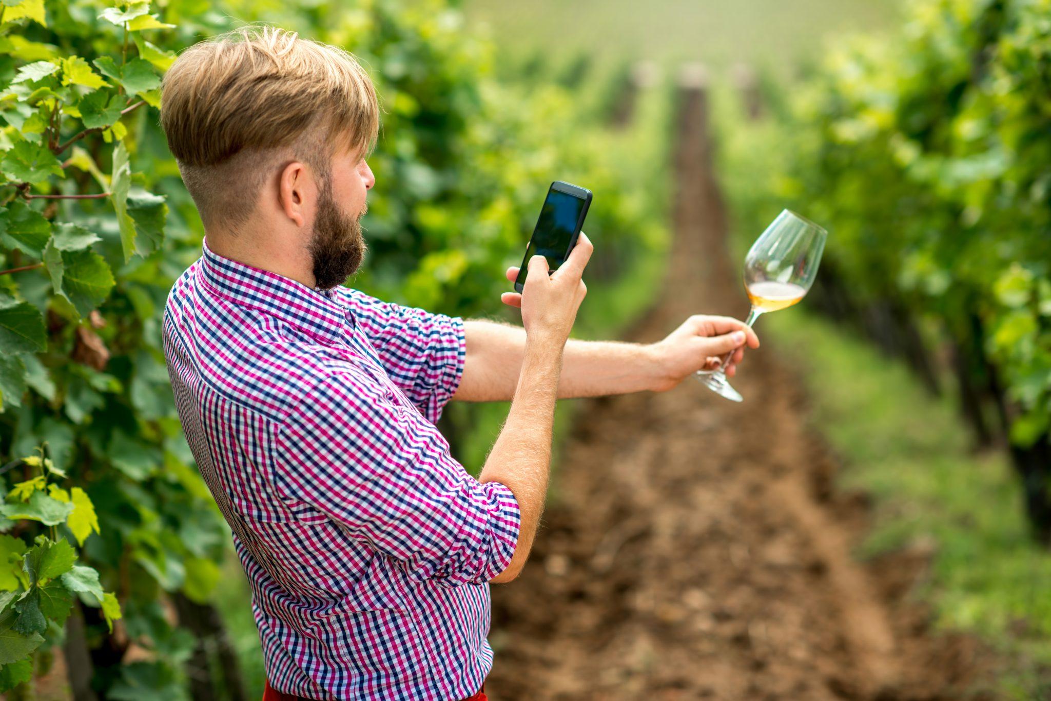 strategie di marketing del vino